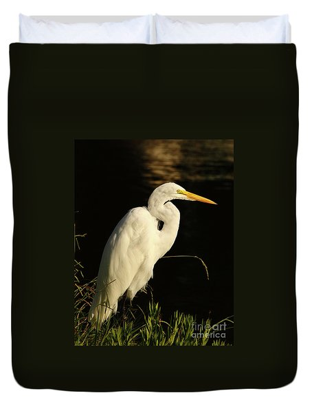 Great Egret At Morning Duvet Cover by Robert Frederick