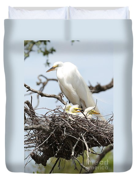 Great Egret Nest With Chicks And Mama Duvet Cover by Carol Groenen