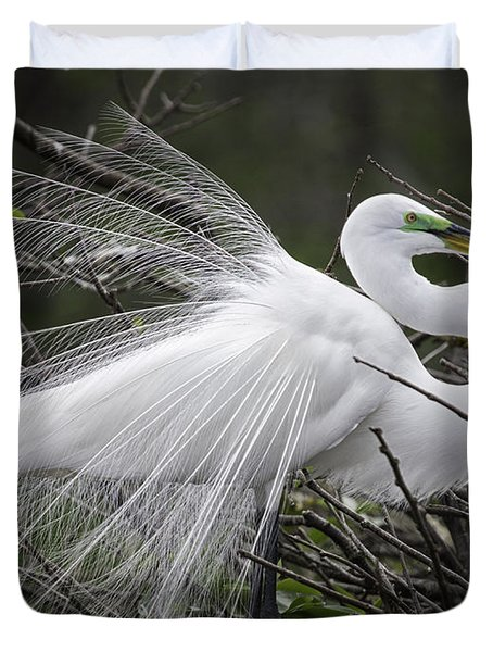 Great Egret Preening Duvet Cover