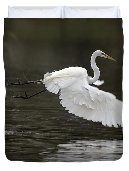 Great Egret Takeoff Duvet Cover by Gary Langley