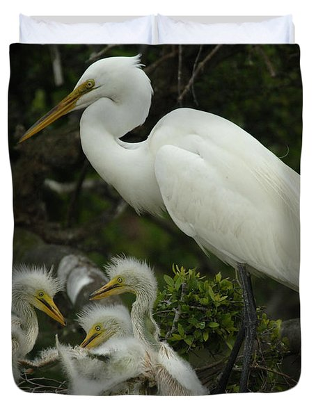 Great Egret With Young Duvet Cover by Bob Christopher