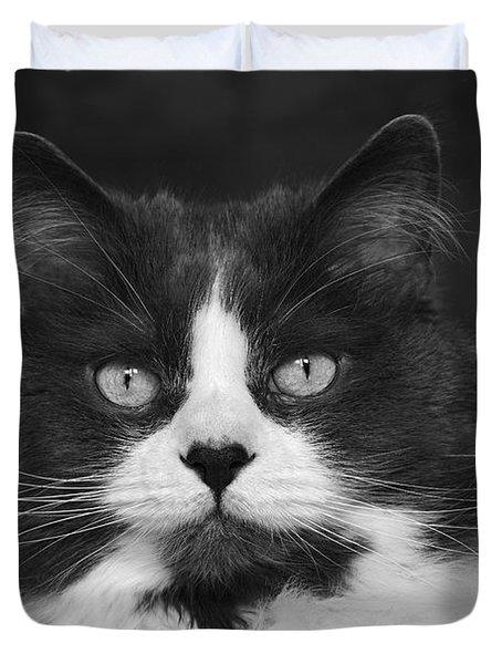 Great Gray Cat Duvet Cover