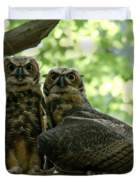 Great Horned Owls Duvet Cover by Cheryl Baxter