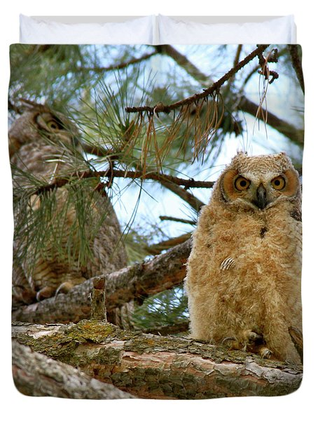 Great Horned Owls Duvet Cover
