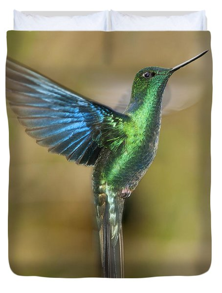 Great Sapphirewing Hummingbird Duvet Cover by Dan Suzio