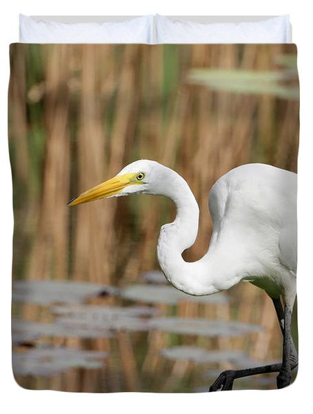 Great White Egret By The River Duvet Cover by Sabrina L Ryan