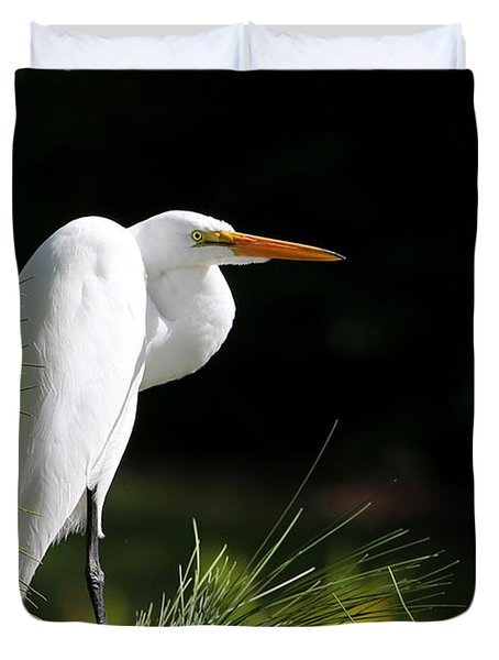 Great White Egret In The Tree Duvet Cover by Sabrina L Ryan