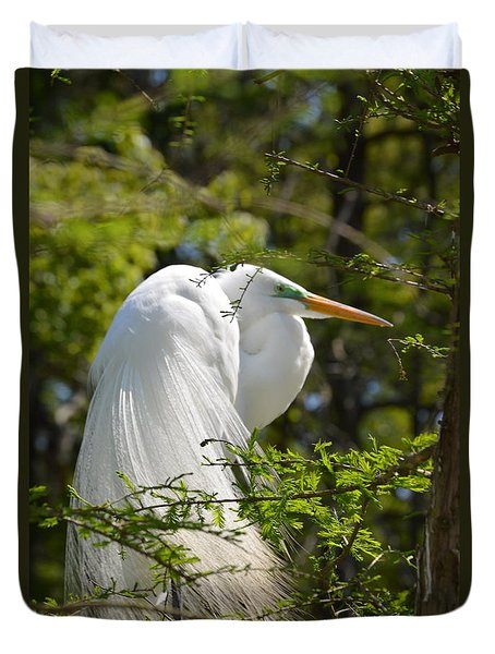 Duvet Cover featuring the photograph Great White Egret On Nest by Judith Morris
