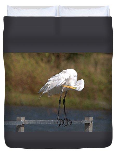 Great White Egret Preening Duvet Cover
