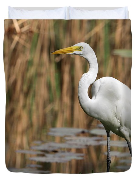 Great White Egret Taking A Stroll Duvet Cover by Sabrina L Ryan