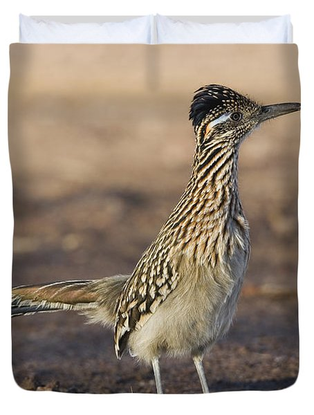 Greater Roadrunner New Mexico Duvet Cover
