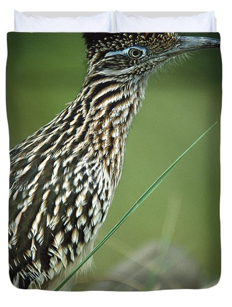 Greater Roadrunner Portrait Duvet Cover
