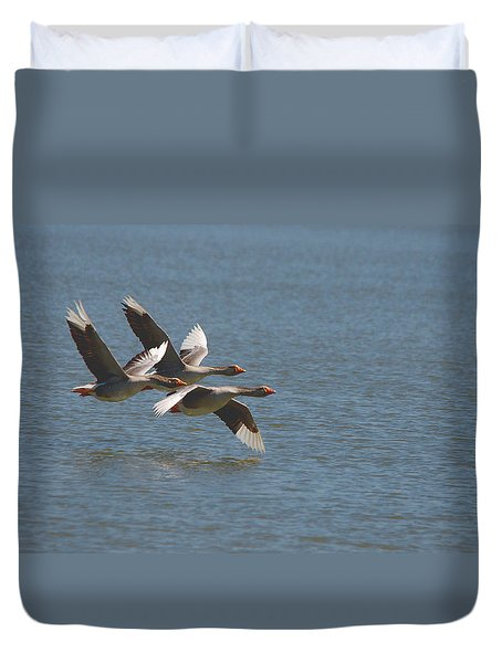 Greater White-fronted Geese In Flight Series 4 Duvet Cover