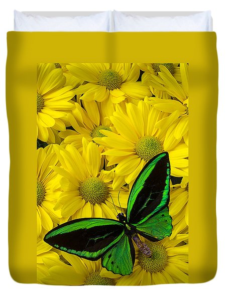 Green Butterfly On Yellow Mums Duvet Cover by Garry Gay