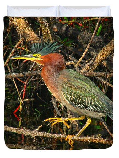 Green Heron Basking In Sunlight Duvet Cover