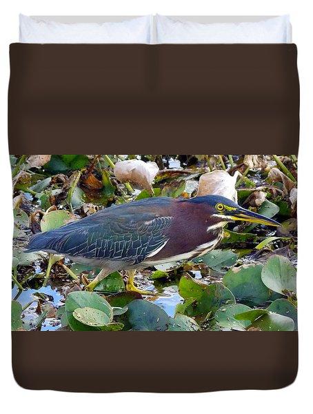 Green Heron La Chua Trail 2 Duvet Cover