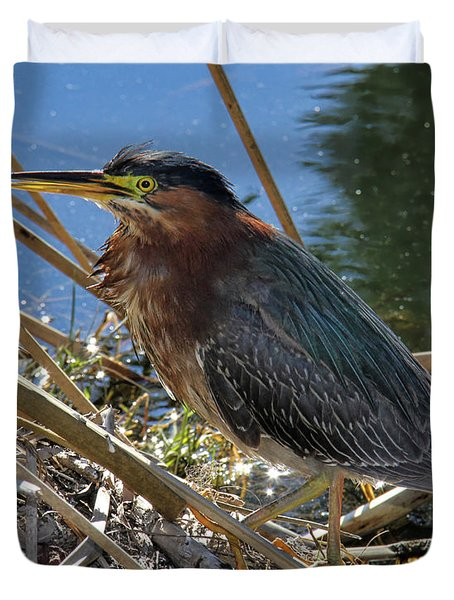 Green Heron  Duvet Cover by Mariola Bitner