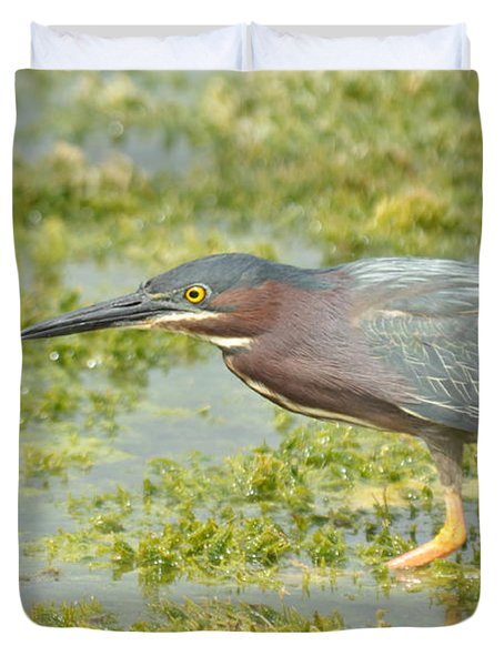 Green Heron On The Hunt Duvet Cover