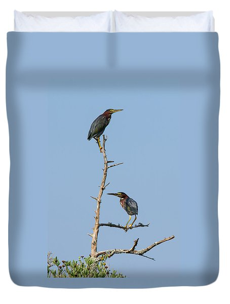 Green Heron Pair Duvet Cover
