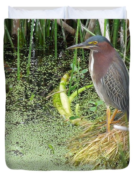 Duvet Cover featuring the pyrography Green Heron by Ron Davidson