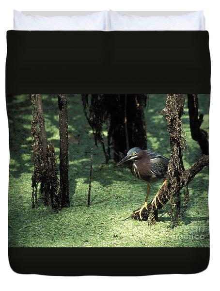 Green Heron Duvet Cover by Steven Ralser