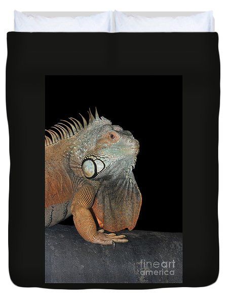 Green Iguana  Duvet Cover by Judy Whitton