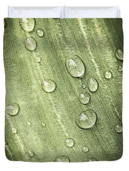 Green Leaf With Raindrops Duvet Cover by Elena Elisseeva