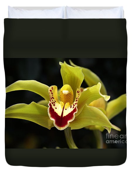 Green Orchid Flower Duvet Cover by Joy Watson