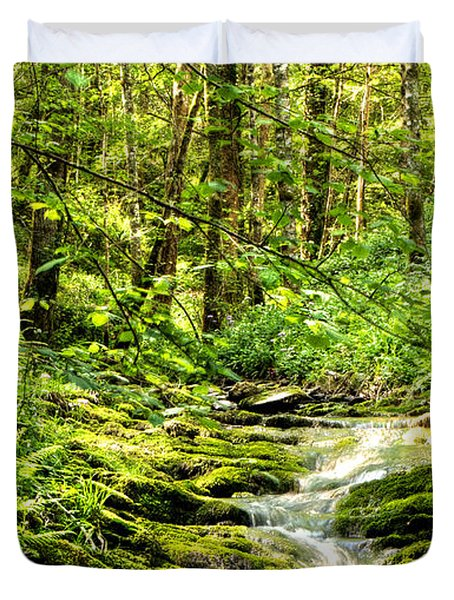 Green River No2 Duvet Cover by Weston Westmoreland