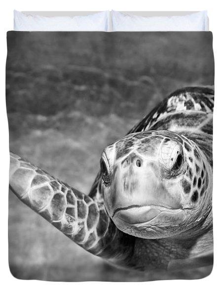 Green Sea Turtle. Duvet Cover by Jamie Pham