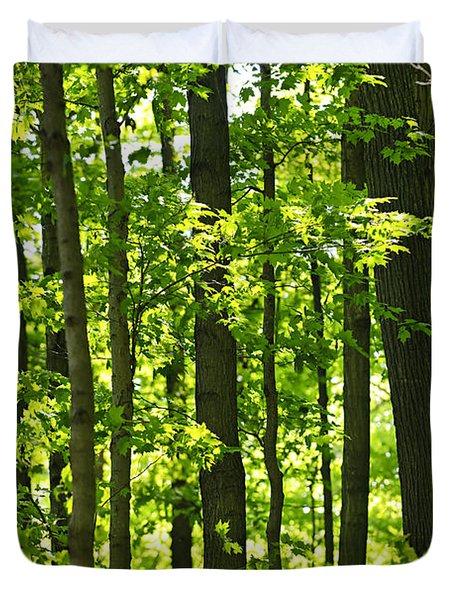 Green Spring Forest Duvet Cover by Elena Elisseeva
