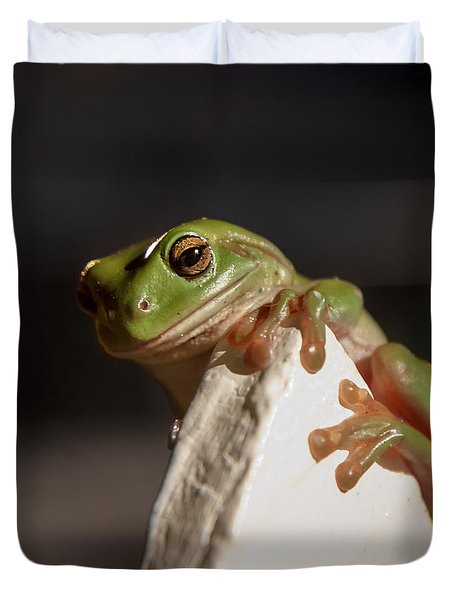 Green Tree Frog Keeping An Eye On You Duvet Cover
