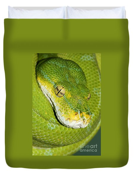 Duvet Cover featuring the photograph Green Tree Python #2 by Judy Whitton
