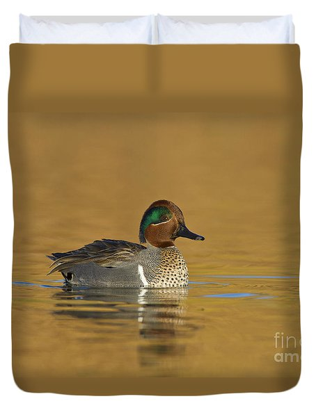 Green Wing Teal Duvet Cover by Bryan Keil