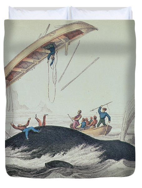Greenland Whale Book Illustration Engraved By William Home Lizars  Duvet Cover by James Stewart