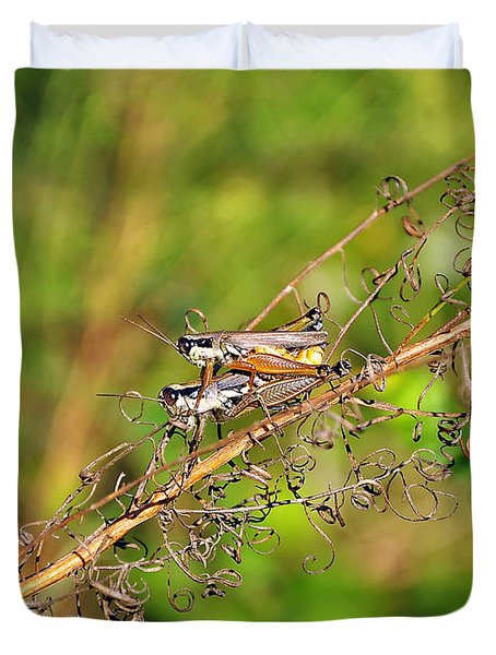Gregarious Grasshoppers Duvet Cover