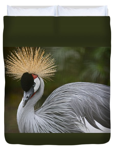 Grey Crowned Crane Duvet Cover by Venetia Featherstone-Witty