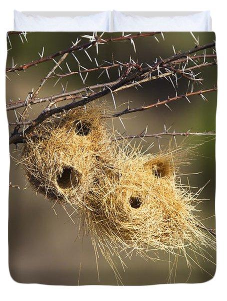 Grey-headed Social-weaver Nests Tanzania Duvet Cover by Konrad Wothe