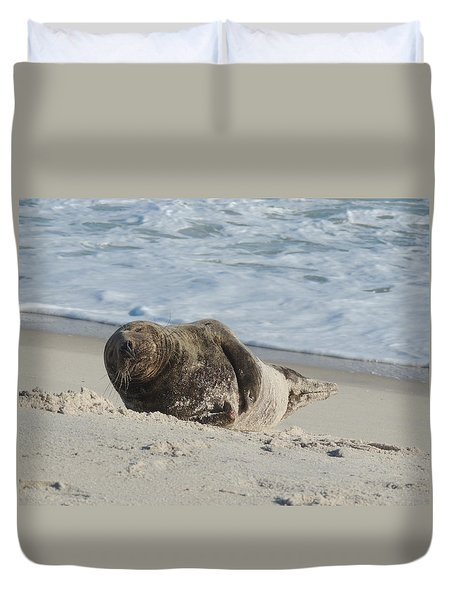 Grey Seal Pup On Beach Duvet Cover by Kimberly Perry