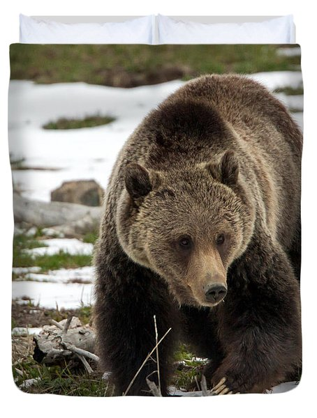 Duvet Cover featuring the photograph Grizzly Bear In Spring by Jack Bell
