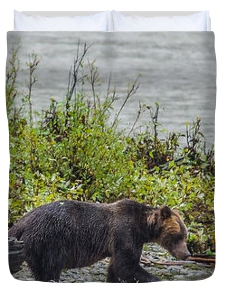 Grizzly Bear Late September 4 Duvet Cover