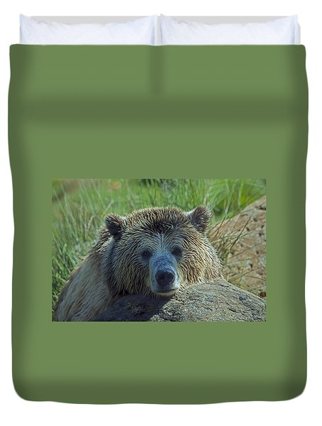 Grizzly Bear Resting Duvet Cover by Garry Gay