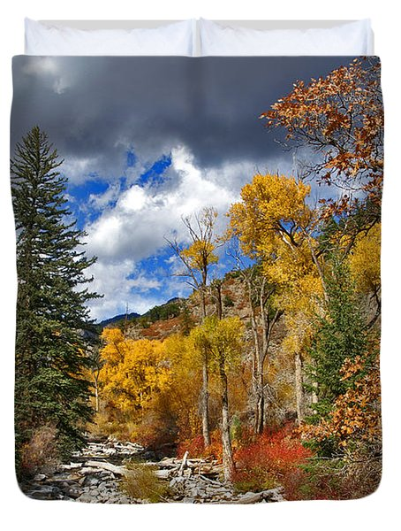 Grizzly Creek Cottonwoods Duvet Cover by Jeremy Rhoades