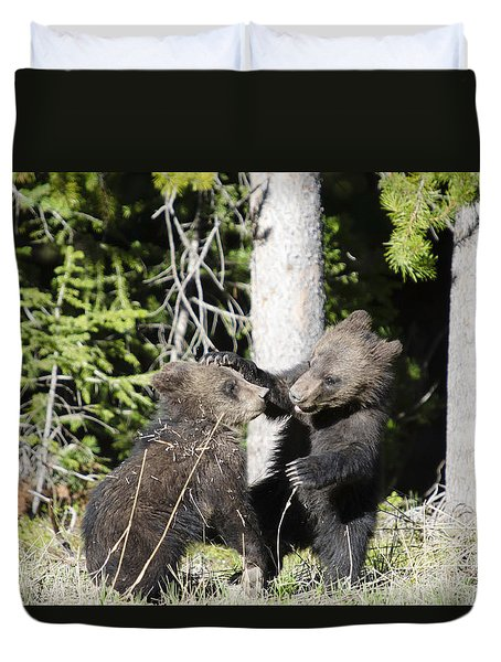 Grizzly Cubs Playing Duvet Cover
