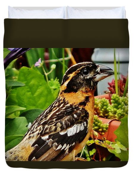 Duvet Cover featuring the photograph Grosbeak Profile by VLee Watson