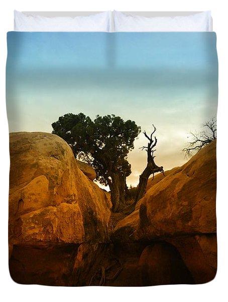 Growing Between The Rocks Duvet Cover by Jeff Swan