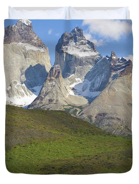 Guanaco And Cuernos Del Paine Duvet Cover