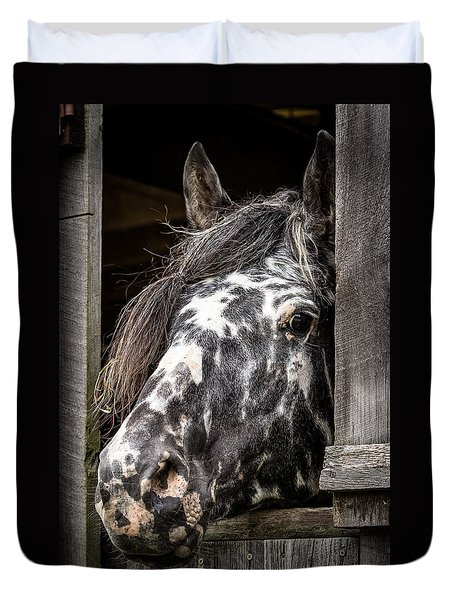 Guard Horse-what's The Password? Duvet Cover
