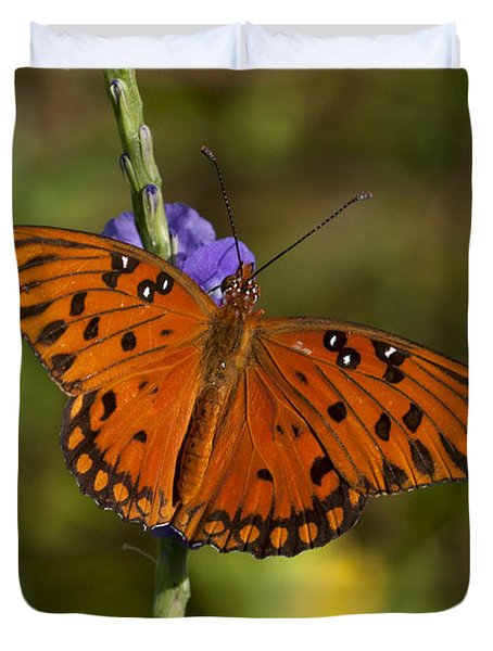 Duvet Cover featuring the photograph Gulf Fritillary Butterfly by Meg Rousher