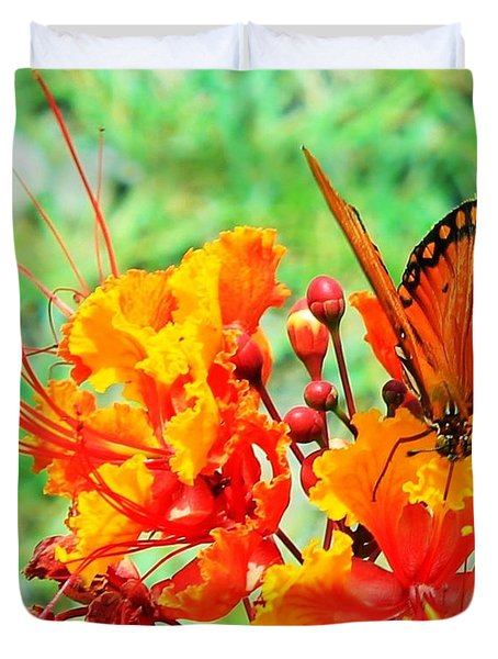 Gulf Fritillary Butterfly On Pride Of Barbados Duvet Cover
